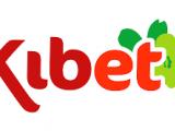 KIB-ET LTD. - MUHASEBE ELEMANI