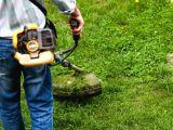 Bahçe temizliği, bakımı, ilaçlama, fidan satışı ekimi yapılır... vs Tüm işler için arayabilirsiniz.9