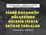 Kozanköy Bölgesinde Satılık Tarlalar